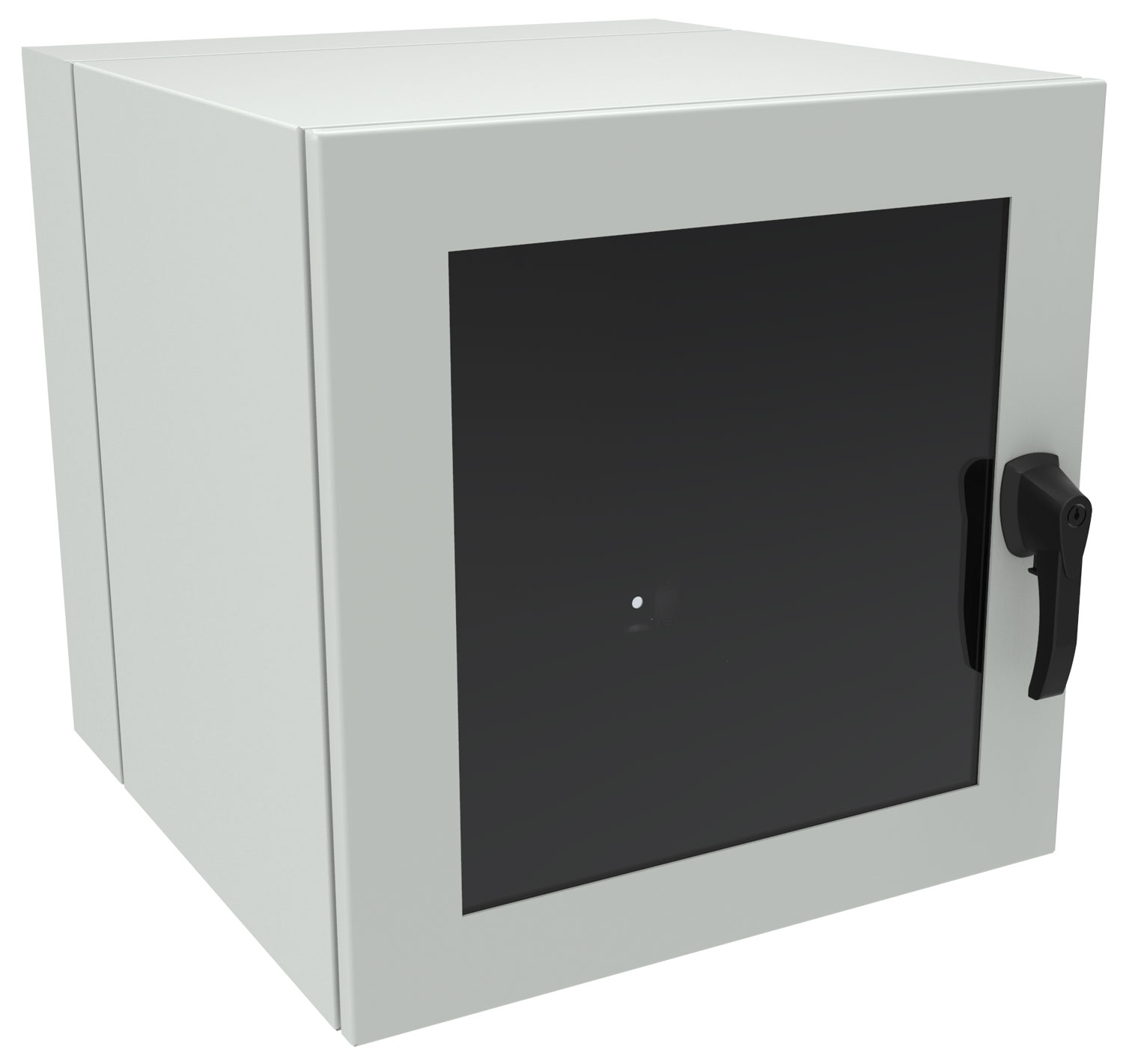 EN4DH242424LG - EN4DH Series NEMA Rated Swing-Out Wall Mount Cabinet