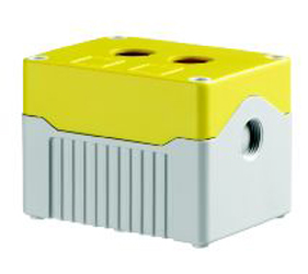 DE02D-P-YG-2 - Control Station Enclosure with Two Holes and a Deep Base